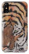 Wading Tiger IPhone Case