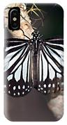 Waiting --- Rice Paper Butterfly IPhone Case