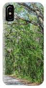 Walking In The Woods Of Amelia Island IPhone Case