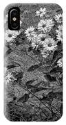 Wallflower Ain't So Bad Bw IPhone Case