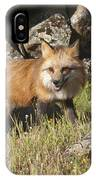 Wary Red Fox IPhone Case
