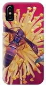 Wasp On Indian Hawthorn IPhone Case