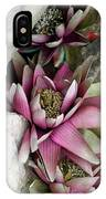 Water Lily - Seerose IPhone Case