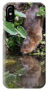Water Vole IPhone Case
