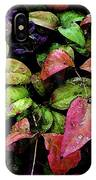 Watercolor Colorful Leaves After A Shower 1771 W_2 IPhone Case