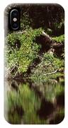 Weeki Wachee Springs IPhone Case