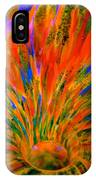 Well Of Colors IPhone Case
