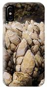 West Coast Barnacles IPhone Case
