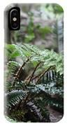 Wet Ferns IPhone Case