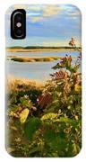 Wetlands In Cape Breton IPhone Case