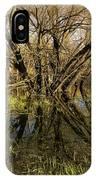 Wetlands Mirror Reflection IPhone Case