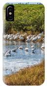 Wetlands Watering Hole IPhone Case