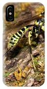 Whip Tailed Wasp IPhone Case
