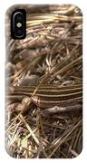 Whiptail Lizard IPhone Case