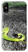 Whirly-gigs On The Path IPhone Case