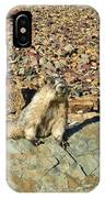 Whistle Pig Of The Rockies IPhone Case
