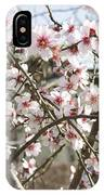 White Almond Flowers IPhone Case