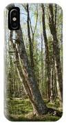 White Birch Forest IPhone Case