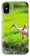 White Egret And Roseate Spoonbills IPhone Case