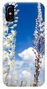 White Flowering Sea Squill On A Blue Sky IPhone Case