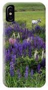 White Horse In A Lupine Field IPhone Case