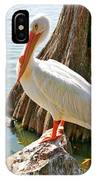 White Pelican By Cypress Tree IPhone Case