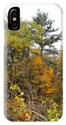 White Pine Hollow State Forest IPhone Case
