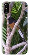 White Rumped Shama IPhone Case