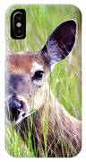 White Tail Doe IPhone Case