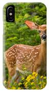 White-tail Fawn IPhone Case