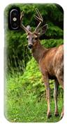 White Tailed Buck IPhone Case