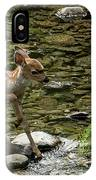 White-tailed Fawn At Vichy Springs Resort In Ukiah IPhone Case