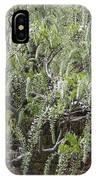 White Wisteria, Sissinghurst IPhone Case
