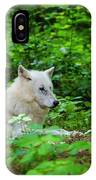 White Wolfe IPhone Case