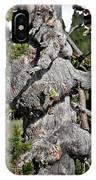 Whitebark Pine Tree - Iconic Endangered Keystone Species IPhone Case