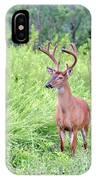 Whitetail Deer 4 IPhone Case