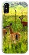 Whitetail Deer Family IPhone Case