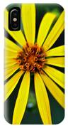 Whorled Rosinweed IPhone Case