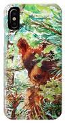 Wild Bear Peek-a-boo Watercolour IPhone Case
