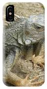 Wild Colorful Iguanas In The Outdoors With Spines On His Back IPhone Case