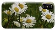 Wild Daisies IPhone Case
