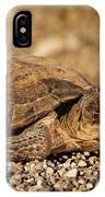 Wild Desert Tortoise Saguaro National Park IPhone Case