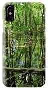 Wild Goose Woods Pond Iv IPhone Case