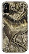 Wild Horse Cavern IPhone Case