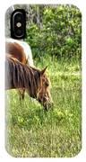 Wild Horses Of Assateague 5 IPhone Case