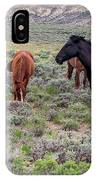 Wild Horses Of White Mountain IPhone Case