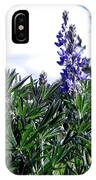 Wild Lupines IPhone Case