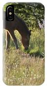 Wild Mountain Lupine IPhone Case