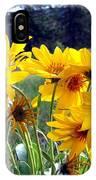 Wild Okanagan Sunflowers IPhone Case