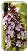 Wild Orchid In Meadow  IPhone Case